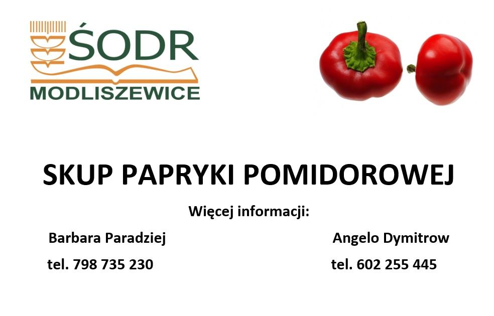Skup papryki pomidorowej